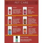 寵物的精油天然護理