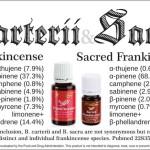 Protected: Frankincense VS Sacred Frankincense