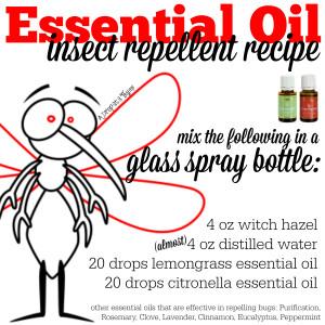 Essential-Oil-Insect-Repellant-Recipe