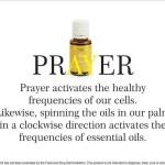 Protected: 『恢復』原有的免疫力