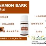 cinnamon bark 肉桂精油