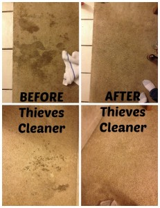 Thieves_Cleaner
