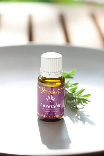 Young-Living-Lavender