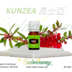 昆士亞精油 Kunzea essential oil